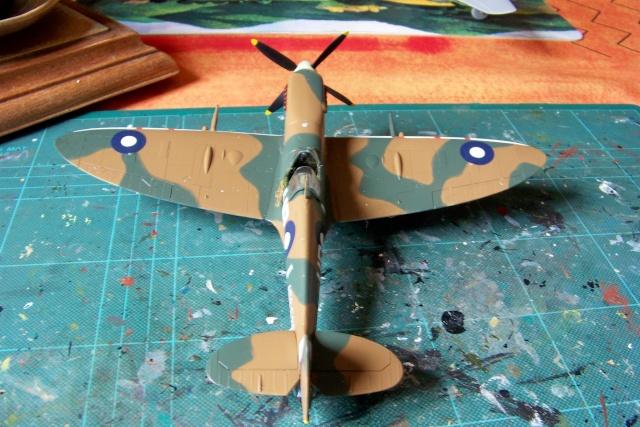 Spitfire Mk VIII > Morotaï étè 1945 (fini) - Page 2 100_8112