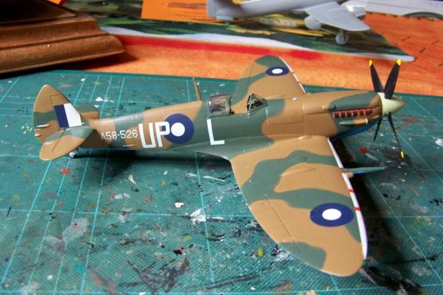 Spitfire Mk VIII > Morotaï étè 1945 (fini) - Page 2 100_8113