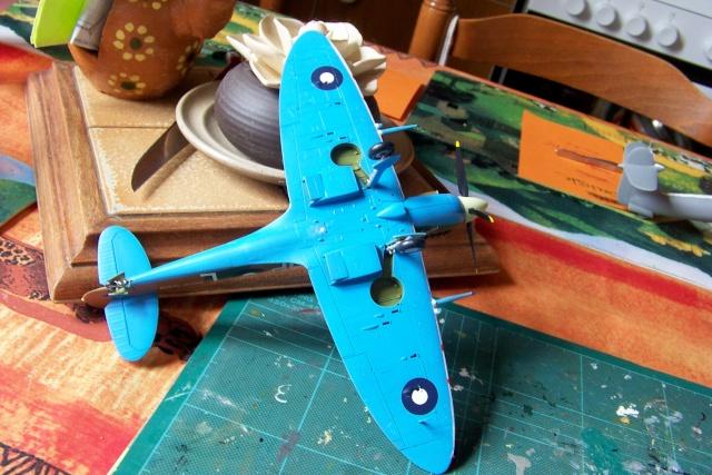 Spitfire Mk VIII > Morotaï étè 1945 (fini) - Page 2 100_8114