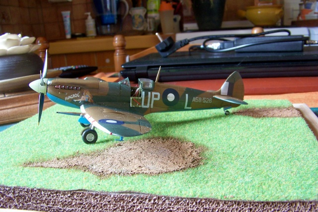 Spitfire Mk VIII > Morotaï étè 1945 (fini) - Page 2 100_8123