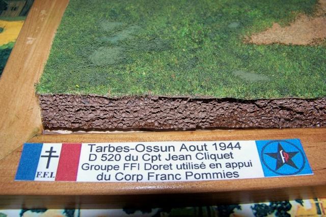 D 520  Tarbes-Ossun 1944 (fini) 100_8132