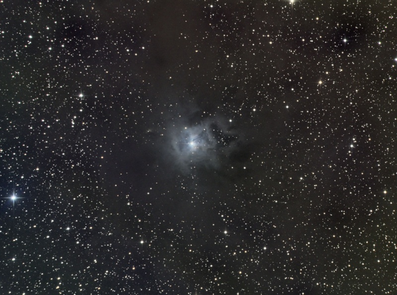 Nébuleuse IRIS NGC7023 Lrvb_v10