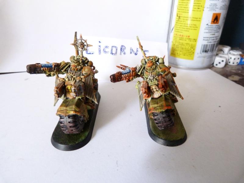 [Rikikileur - Chaos ] Force d'intervention  P1050915