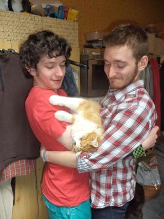perte d'un petit chat mon ami Dsc00517