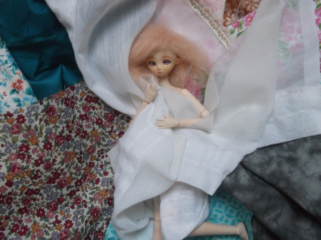 [OBITSU] Petite fairy Dscf6130