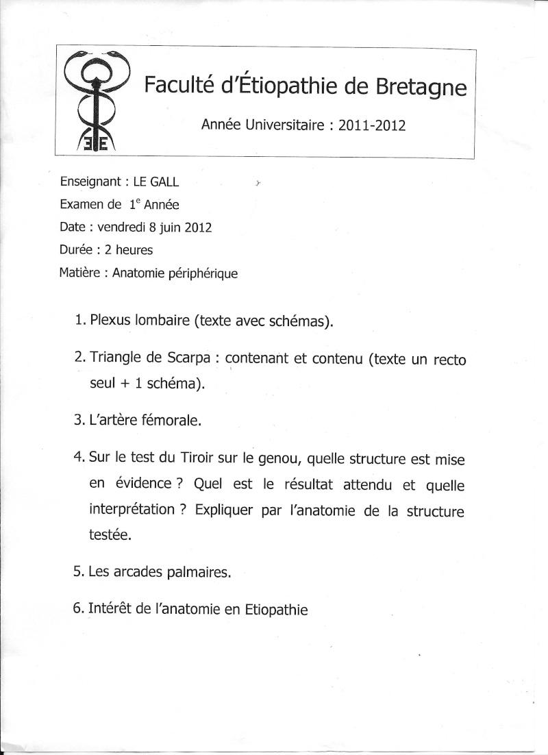 Rennes - 1ère année Anat_110
