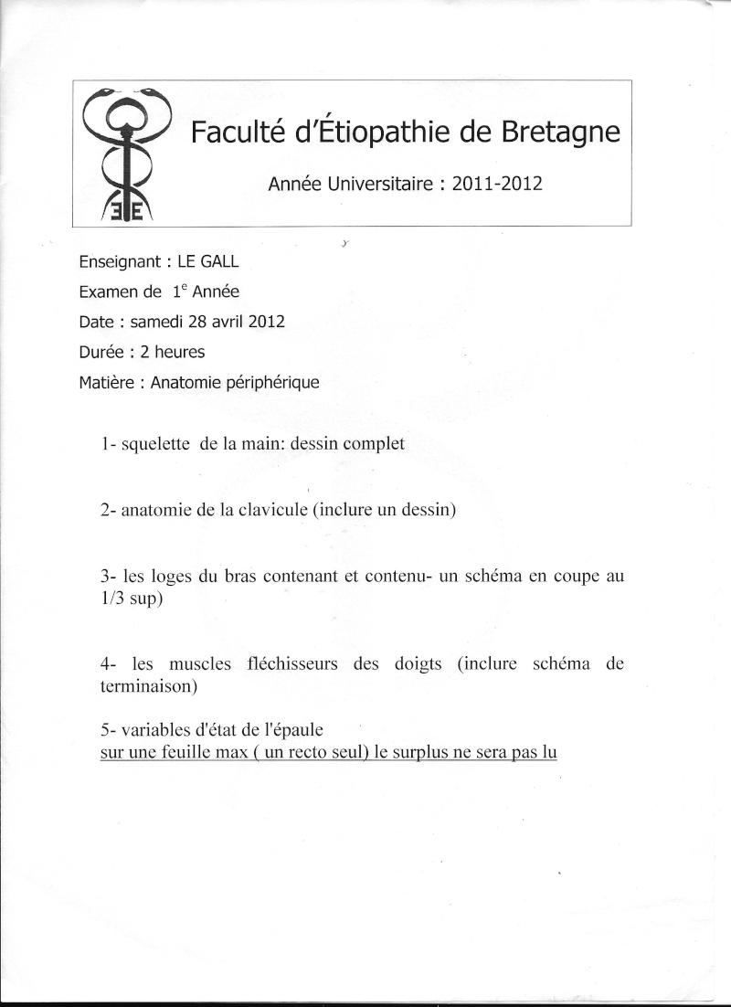 Rennes - 1ère année Anat_111