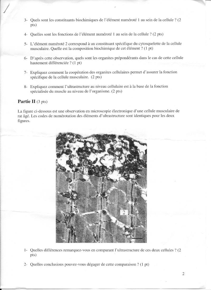 Rennes - 1ère année Biocel12