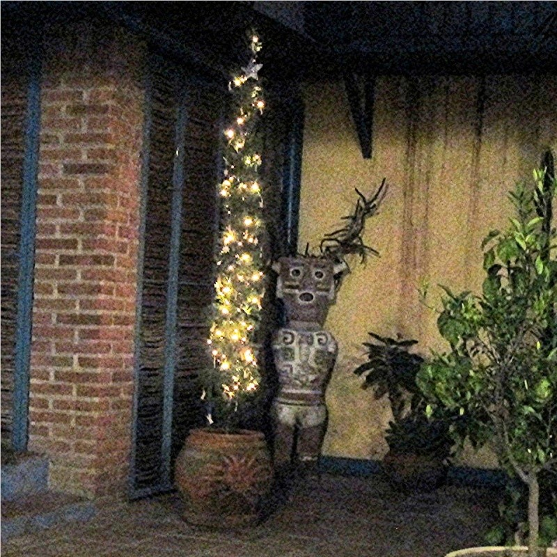 Felice Navidad Festiv10