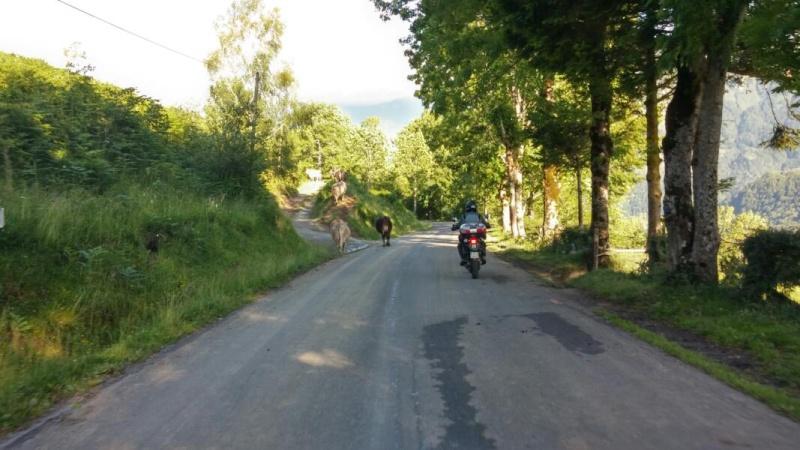 Traversée des Pyrénées en KLRs 10954-10