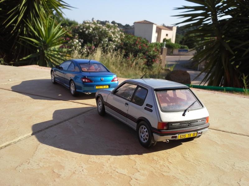 2CV6, 205 GTI et 406 coupé 1/18 et 1/1 20140636