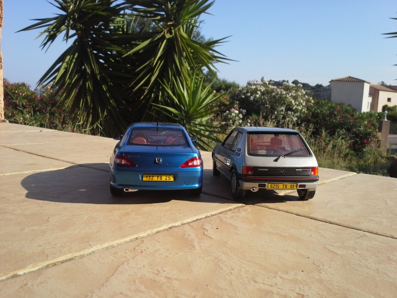 2CV6, 205 GTI et 406 coupé 1/18 et 1/1 20140637