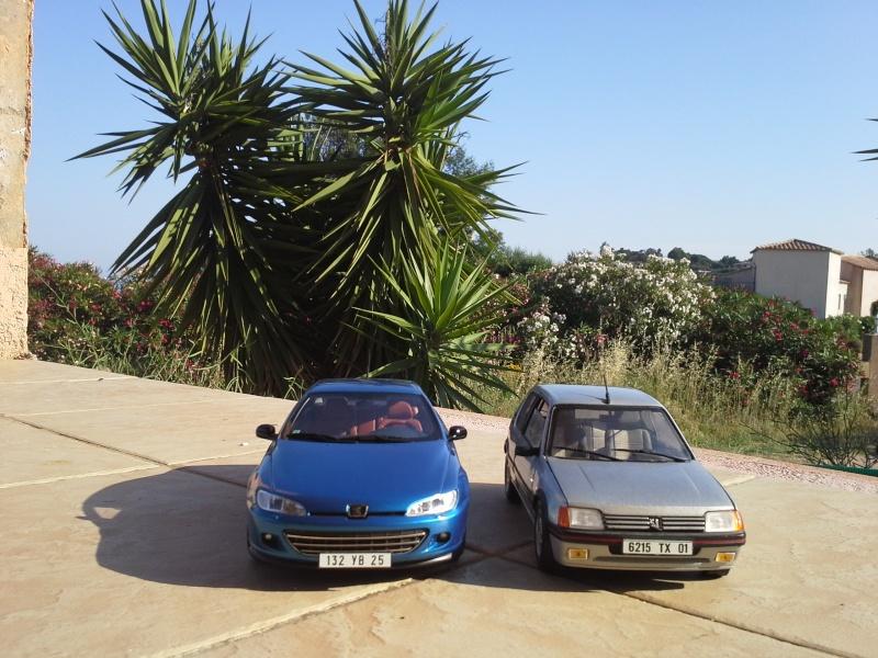 2CV6, 205 GTI et 406 coupé 1/18 et 1/1 20140638