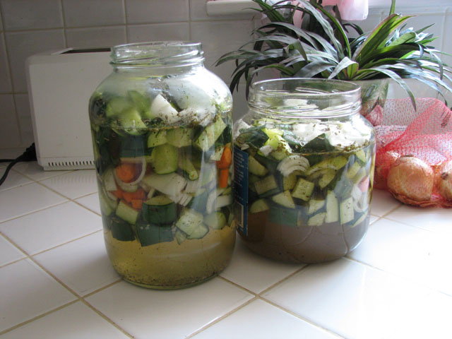 I made a small batch of refridgerator pickles Pickle10