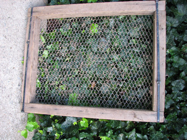 compost screen - should have done this last year Screen13