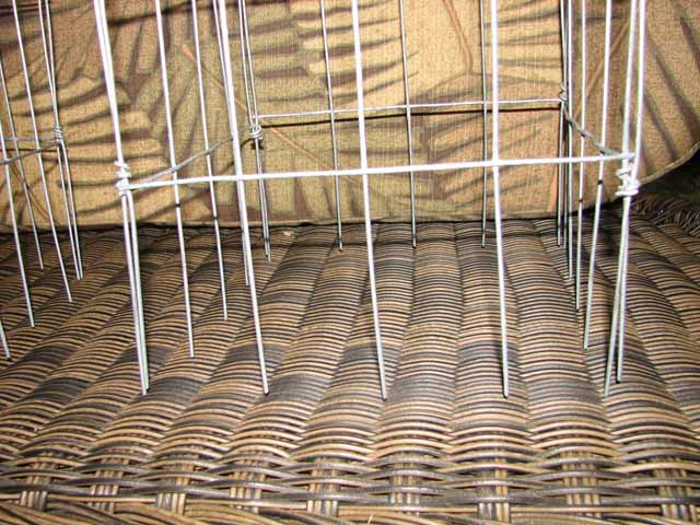 support cages for plants Wire_c12