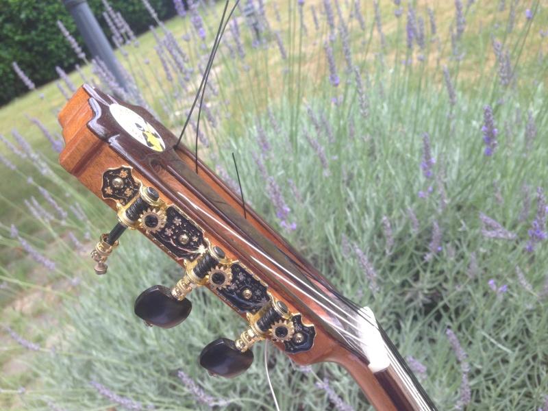 Le coin du luthier : les belles mécaniques Photo_11