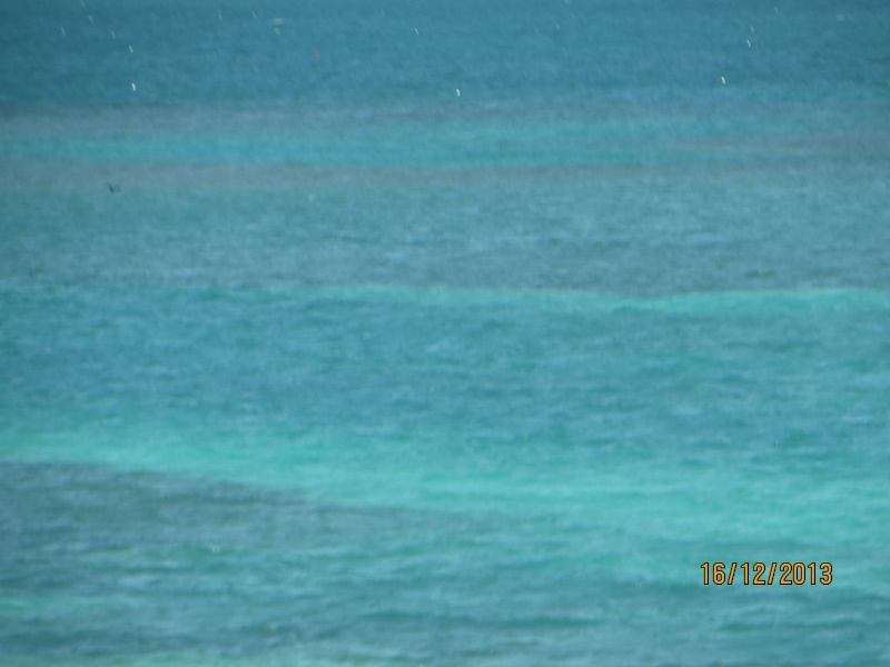 [FLORIDA 2013] 3 semaines magiques en Floride - Page 9 Img_3429