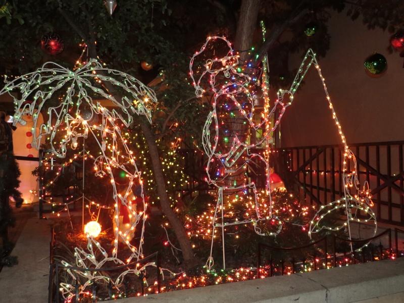 [FLORIDA 2013] 3 semaines magiques en Floride - Page 9 Img_3523