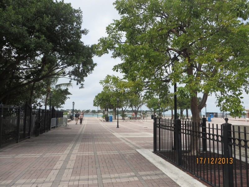 [FLORIDA 2013] 3 semaines magiques en Floride - Page 9 Img_3534