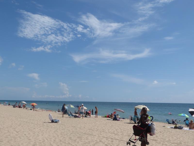 Florida 2014 - Le rêve continue... (2eme voyage) Img_4629