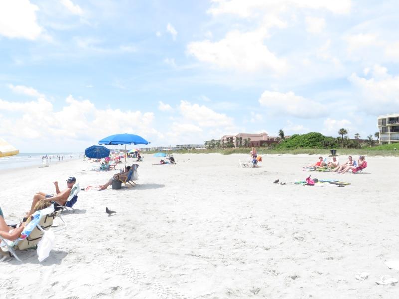 Florida 2014 - Le rêve continue... (2eme voyage) - Page 3 Img_4712
