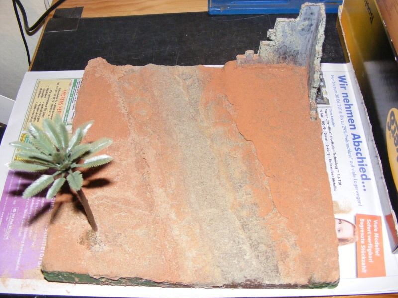 Ein kleiner Ausschnitt einer großen Wüste Dscf1324