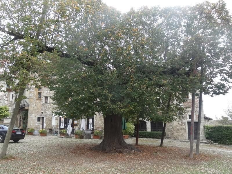 Cité médiévale de Pérouges 01112