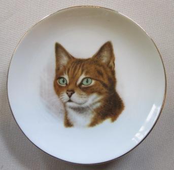 Cat dish with Arnold's Agencies NZ Cat_di10