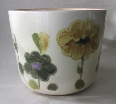I found a Crown Lynn Ironstone Handpainted Made In Philippines today!! Cl_pla10