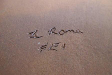 Te Rona ... Te_ron11