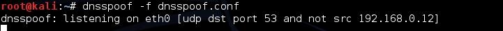 Tutorial dnsspoof para Kali Linux Dnsspo12