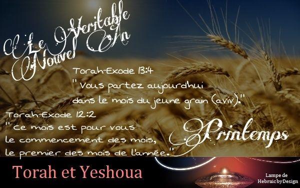 Le Véritable Nouvel An Vyrita10