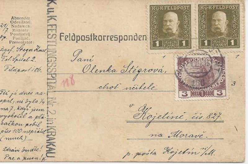 1914 - 1918   Der Untergang der K.u.K. Monarchie - Seite 2 Bild_232