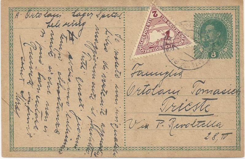 1914 - 1918   Der Untergang der K.u.K. Monarchie - Seite 2 Bild_238