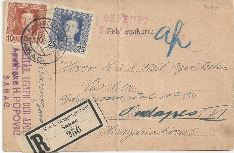 1914 - 1918   Der Untergang der K.u.K. Monarchie - Seite 2 Bild_345