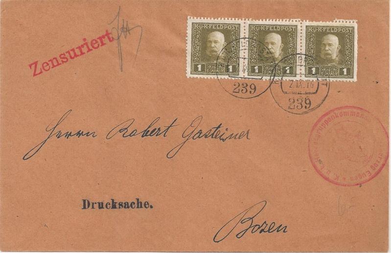 1914 - 1918   Der Untergang der K.u.K. Monarchie - Seite 2 Bild_726