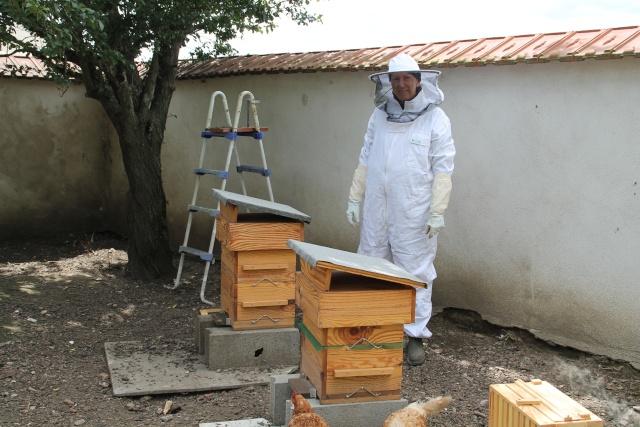Chronique de mes abeilles Img_0910