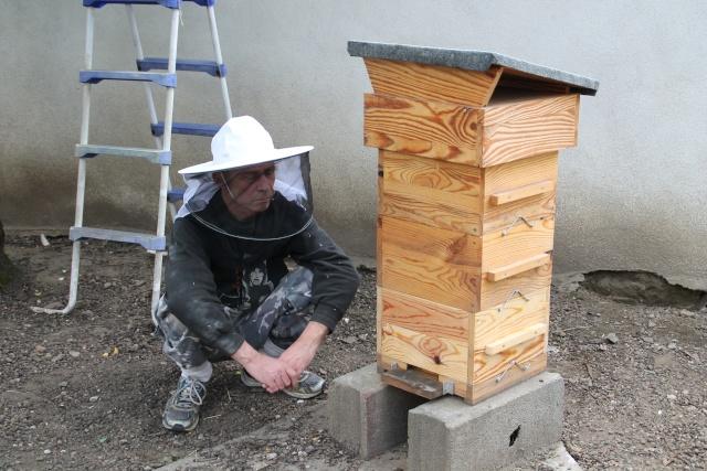 Chronique de mes abeilles Img_1010