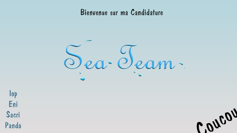 Candidature SeaTeam Intro10