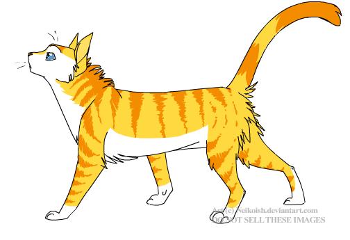 Cait's Kitty Profiles Wildki12