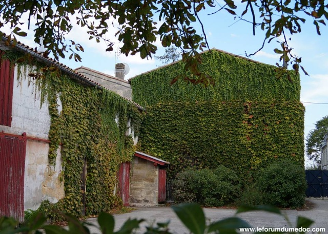 Le Parc municipal du Château d'Arche à Ludon Médoc 10349010