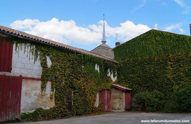 Le Parc municipal du Château d'Arche à Ludon Médoc 10425310