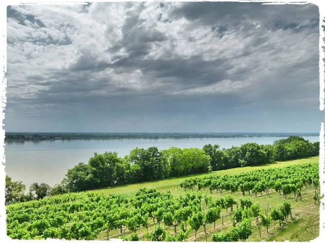 Citadelle de Blaye et la Route de la corniche de la Gironde 10441010