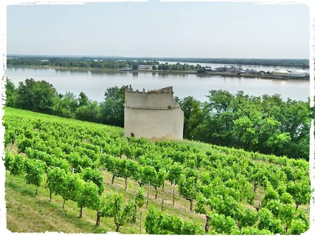 Citadelle de Blaye et la Route de la corniche de la Gironde 10456211