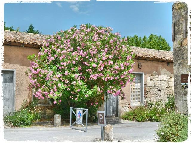 Citadelle de Blaye et la Route de la corniche de la Gironde 10469910