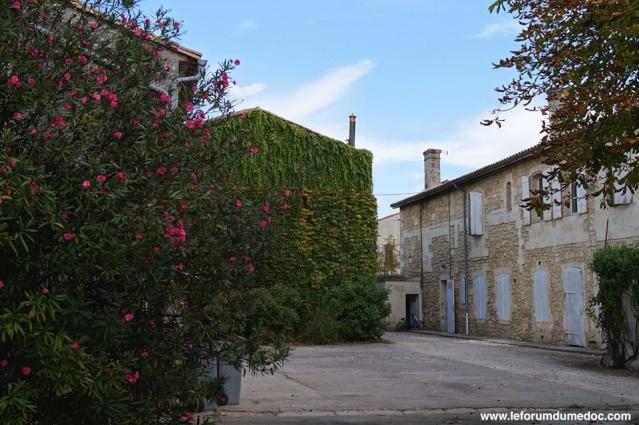 Le Parc municipal du Château d'Arche à Ludon Médoc 10610511