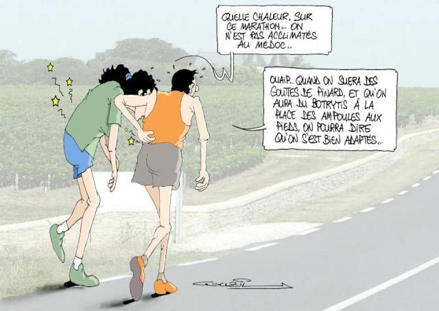 Les dessins humoristiques du Journal Sud Ouest sur l actualité du Médoc 10649511