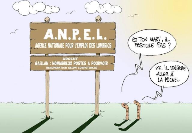 Les dessins humoristiques du Journal Sud Ouest sur l actualité du Médoc 10670011