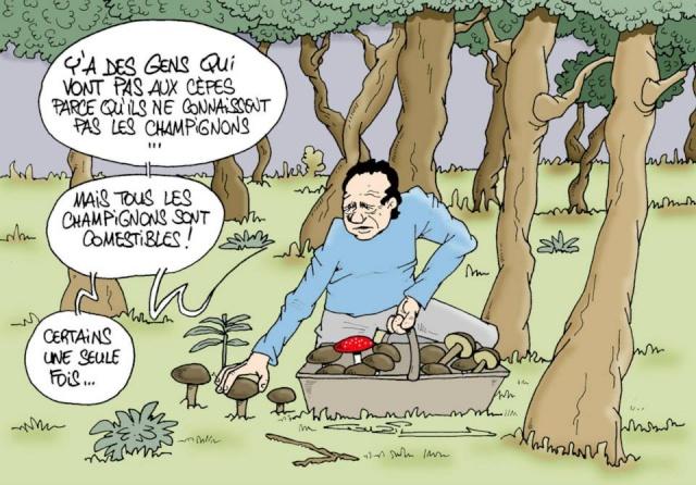 Les dessins humoristiques du Journal Sud Ouest sur l actualité du Médoc 10676110